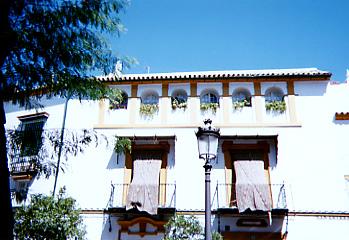 青い空に映える、白い家
